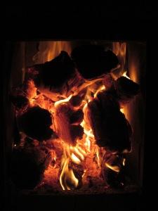 fuego estufa 002